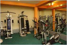 Hotel Alfa, Fitness room