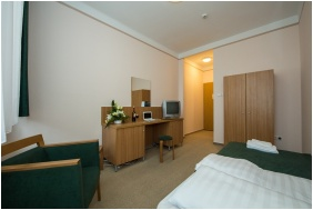 Single room, Hotel Alfold Gyongye, Oroshaza