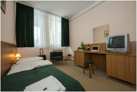 Hotel Alfold Gyongye, Oroshaza, Single room