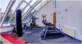 Art Hotel, Fitness room - Zalakaros