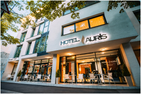 Auris Hotel Szeged, Szeged, Adventure pool