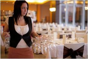 Balneo Hotel Zsori Thermal & Wellness, Mezokovesd, Festive place setting