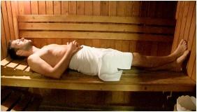 Finnish sauna, Hotel Phonix, Tiszaujvaros