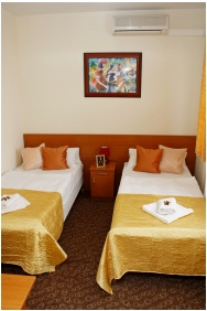 Executive room, Hotel Phonix, Tiszaujvaros