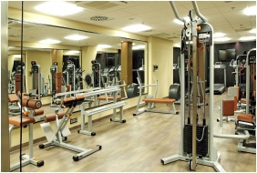 Fitness room, Continental Hotel Budapest, Budapest