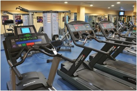 Fitness room - The Aquincum Hotel Budapest