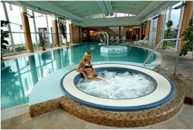 Dráva Hotel Thermal Resort, Harkány, Élménymedence