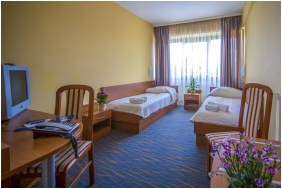Classic szoba - Duna Hotel