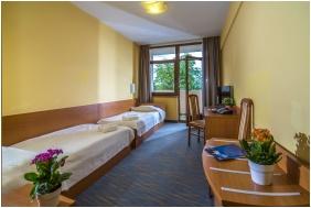 Standard szoba - Duna Hotel