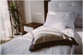 Classic room - Elixir Medical Wellness Hotel