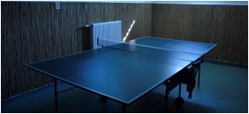 EMAN Apartmenthouse, Table tenis