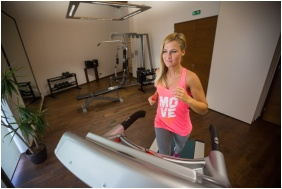 Erzsebet Grand Hotel, Fitness room - Paks