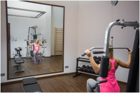 Erzsebet Grand Hotel, Fitness room