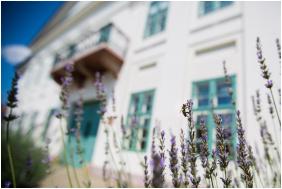 Erzsebet Grand Hotel, Building