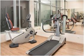 Ftness room, Erzsebet Kralyne Hotel, odollo