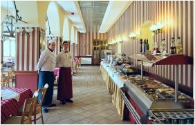 Park Hotel Erzsebet, Dnn room