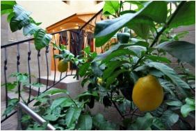 Főnix Medical Wellness Resort, Szauna - Nógrádgárdony