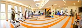 Globall Football Park & Sporthotel, Telki, Fitness room
