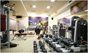 Fitness room, Golden Ball Club Hotel, Gyor