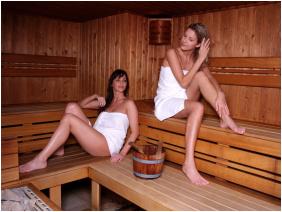 Danubius Health Spa Resort Sárvár, Sárvár, Finnszauna