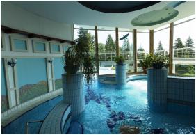 Danubius Health Spa Resort Aqua Hévíz, Élménymedence