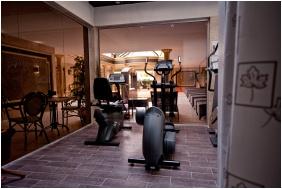 Hotel Aurum, Hajd�szoboszl�, Fitness terem