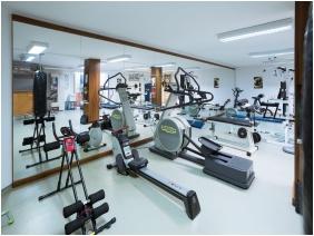 Hotel BorsodChem, Fitness room - Kazincbarcika