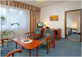 Hotel BorsodChem, Suite - Kazincbarcika