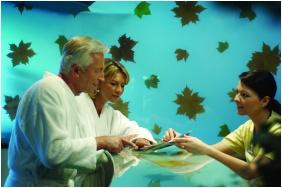 Spa & Wellness centre - Naturmed Hotel Carbona