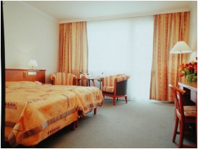 Naturmed Hotel Carbona, Heviz, Standard room