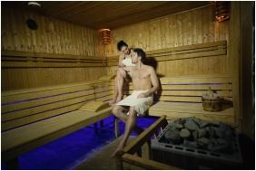 Hotel Delibab, Finnish sauna - Hajduszoboszlo