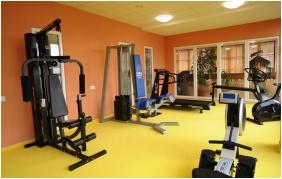Hunguest Hotel Flora - Eger, Fitness room
