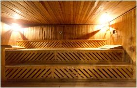 Finnish sauna - Hotel Gara Gyogy- es Wellness Szalloda
