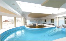 Hotel Gara Gyogy- es Wellness Szalloda, Fuzesgyarmat, Inside pool