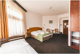 Hotel Gara Gyogy- es Wellness Szalloda, Fuzesgyarmat,