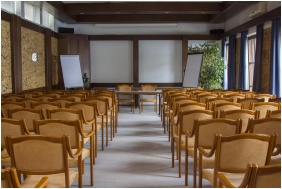 Hotel Hasik, Dobronte, Conference room