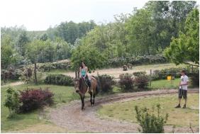 Horse riding - Hotel Hasik