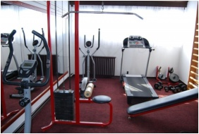 Fitness room, Hotel Hoforras and Resort, Gyula