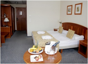 Hotel Karos Spa, Zalakaros, Superor room