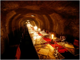 Hotel Korona Wellness, Conference & Wine, Wine tasting