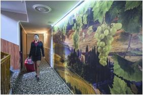 Superior room, Hotel Korona Wellness, Conference & Wine, Eger