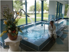 Covered pool - Hotel Magistern Conference & Wellness