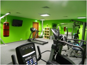 Hotel Magyar Kiraly, Fitness room