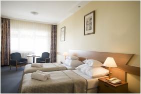 Hotel Marina Port, Twin room - Balatonkenese