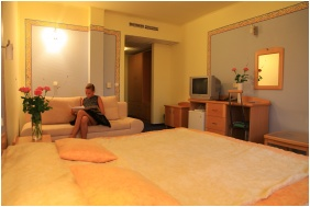 Hotel Neğy Evszak, Superıor room - Hajduszoboszlo
