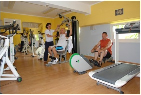 Fitness room - Hotel Panorama Balatongyorok