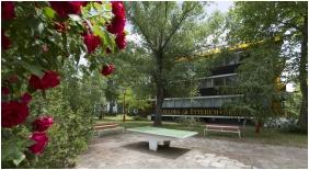 Garden - Hotel Radio Inn