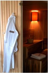 Révész Hotel, Restaurant & Rosa Spa, Finnish sauna