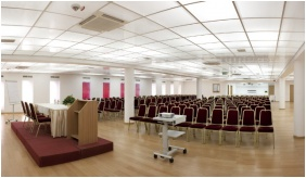 Rubin Wellness and Conference Hotel - Budapest, Conferentiezaal