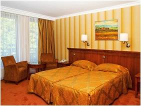 Hotel Silvanus Wellness & Conference, Superior room - Visegrad